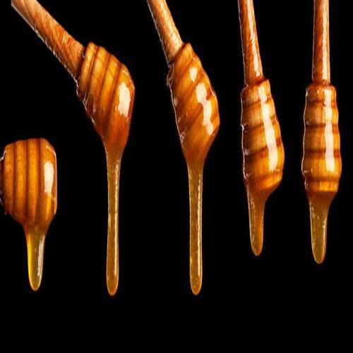 뉴질랜드 마누카 꿀 효능 – 건강 기능 식품 과학적 근거 3