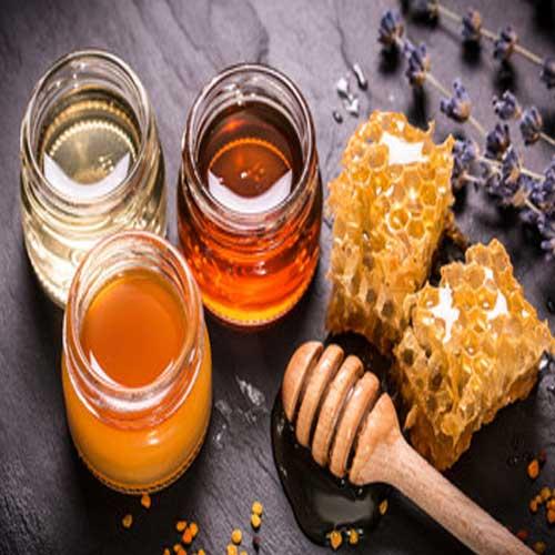 뉴질랜드 마누카 꿀 효능 – 건강 기능 식품 과학적 근거 2