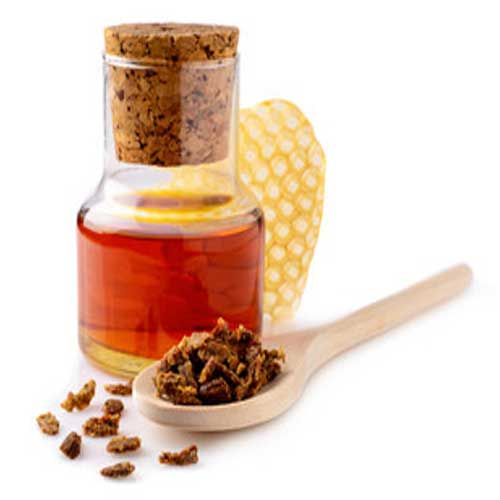 프로폴리스 효능 3가지 – 건강기능 식품 과학적 근거 5