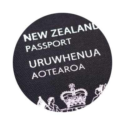 뉴질랜드 해외 취업 현실 1